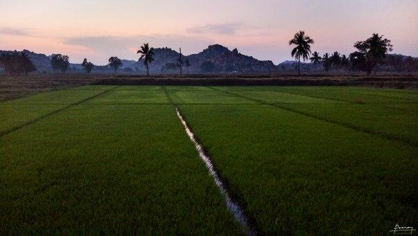 Beautiful farm against a Beautiful backdrop